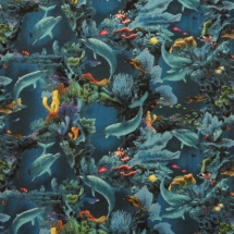 DOLPHINS in CORAL REEF #197
